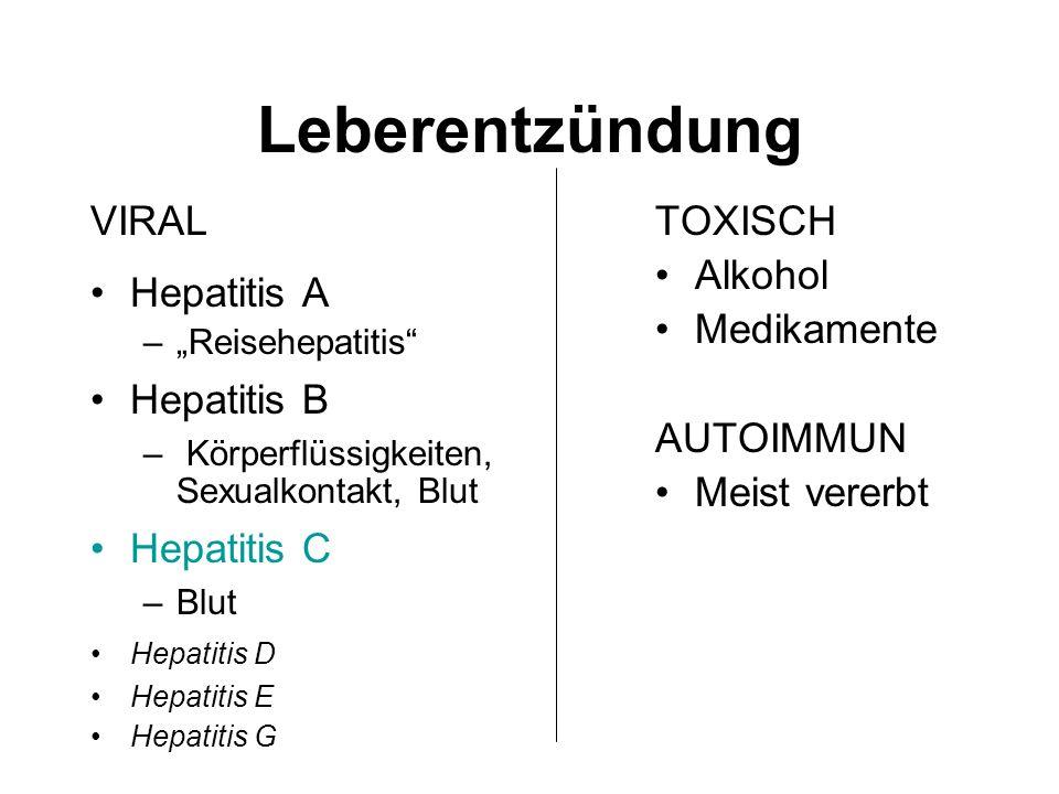 Leberentzündung VIRAL Hepatitis A –Reisehepatitis Hepatitis B – Körperflüssigkeiten, Sexualkontakt, Blut Hepatitis C –Blut Hepatitis D Hepatitis E Hep