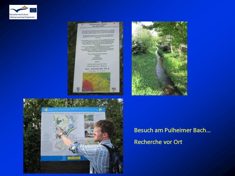 Besuch am Pulheimer Bach… Recherche vor Ort