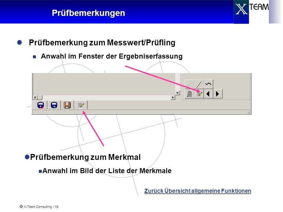 X-Team Consulting / 15 Prüfbemerkungen Prüfbemerkung zum Messwert/Prüfling Anwahl im Fenster der Ergebniserfassung Zurück Übersicht allgemeine Funktio