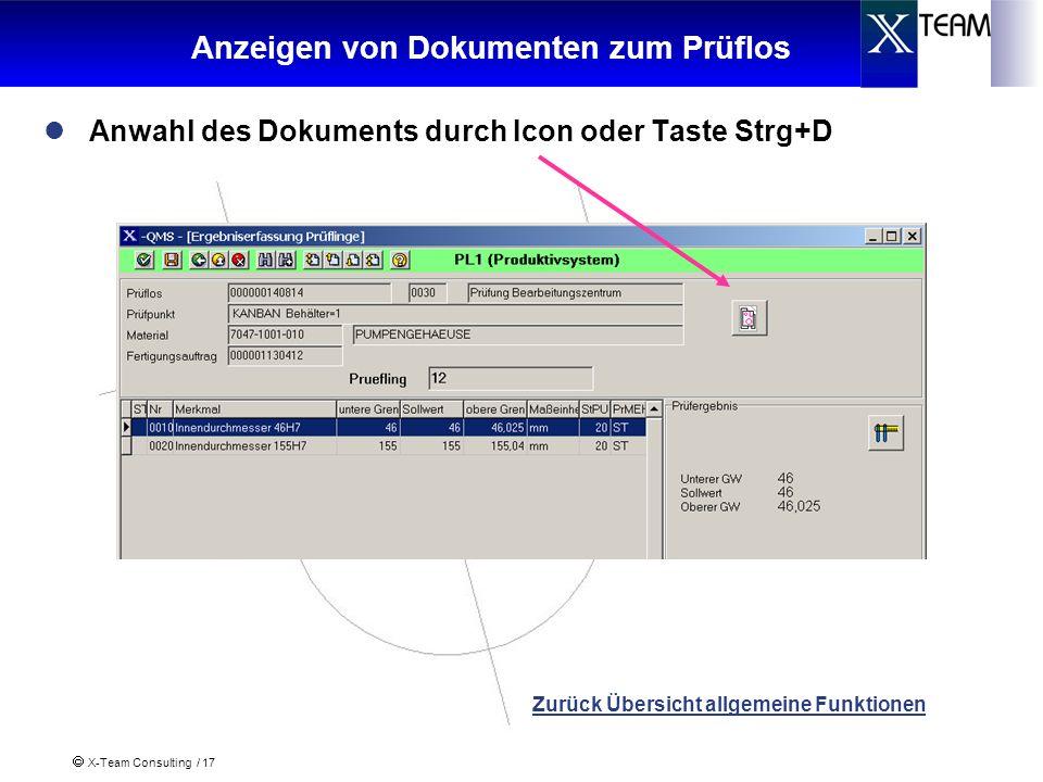 X-Team Consulting / 17 Anzeigen von Dokumenten zum Prüflos Anwahl des Dokuments durch Icon oder Taste Strg+D Zurück Übersicht allgemeine Funktionen