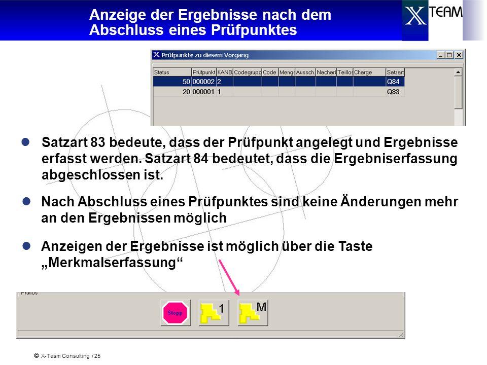 X-Team Consulting / 25 Anzeige der Ergebnisse nach dem Abschluss eines Prüfpunktes Satzart 83 bedeute, dass der Prüfpunkt angelegt und Ergebnisse erfa