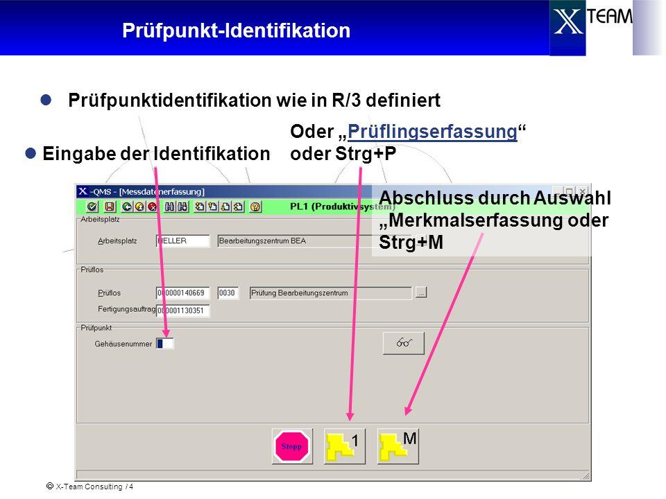 X-Team Consulting / 4 Prüfpunkt-Identifikation Prüfpunktidentifikation wie in R/3 definiert Eingabe der Identifikation Abschluss durch Auswahl Merkmal