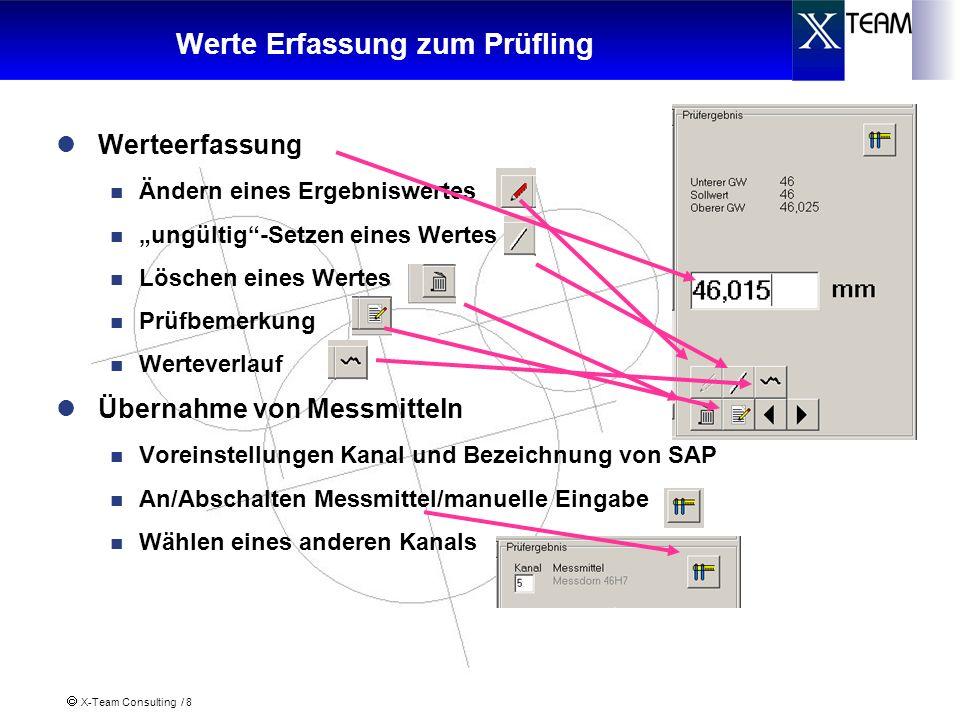 X-Team Consulting / 8 Werte Erfassung zum Prüfling Werteerfassung Ändern eines Ergebniswertes ungültig-Setzen eines Wertes Löschen eines Wertes Prüfbe