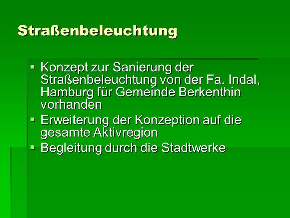 Straßenbeleuchtung Datenerhebung Datenerhebung -Aktuelle Stromkosten für Beleuchtung aller Gemeinden, (im Amt Sandesn/Nusse bekannt) -Betriebszeiten (zust.