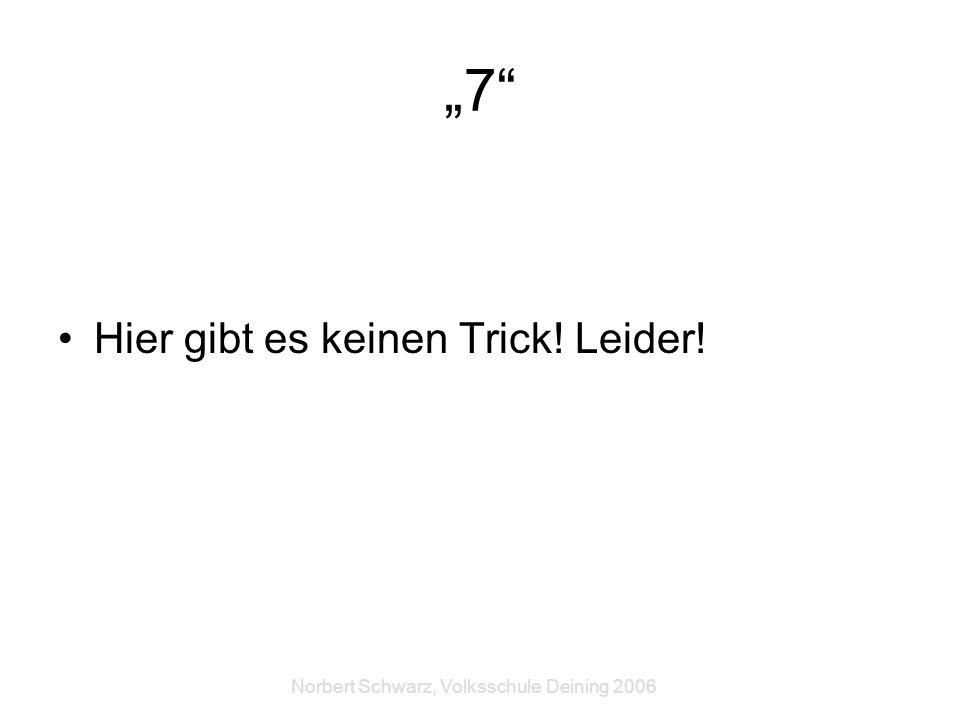 Norbert Schwarz, Volksschule Deining 2006 7 Hier gibt es keinen Trick! Leider!