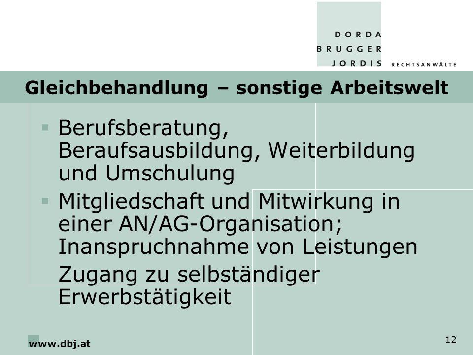 www.dbj.at 12 Gleichbehandlung – sonstige Arbeitswelt Berufsberatung, Beraufsausbildung, Weiterbildung und Umschulung Mitgliedschaft und Mitwirkung in