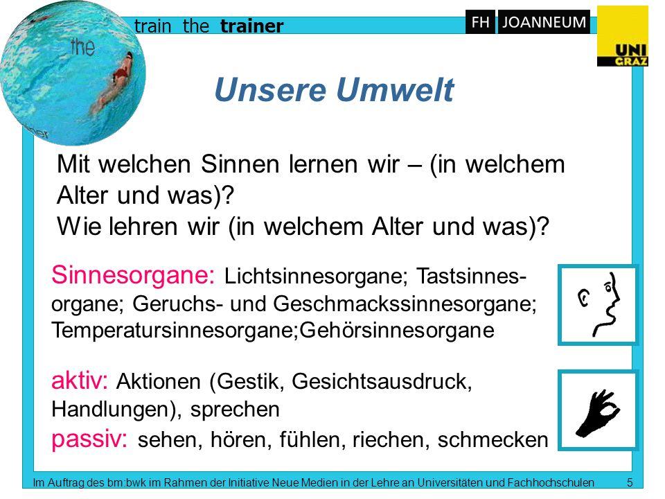 train the trainer Im Auftrag des bm:bwk im Rahmen der Initiative Neue Medien in der Lehre an Universitäten und Fachhochschulen 4 Lehren und Lernen