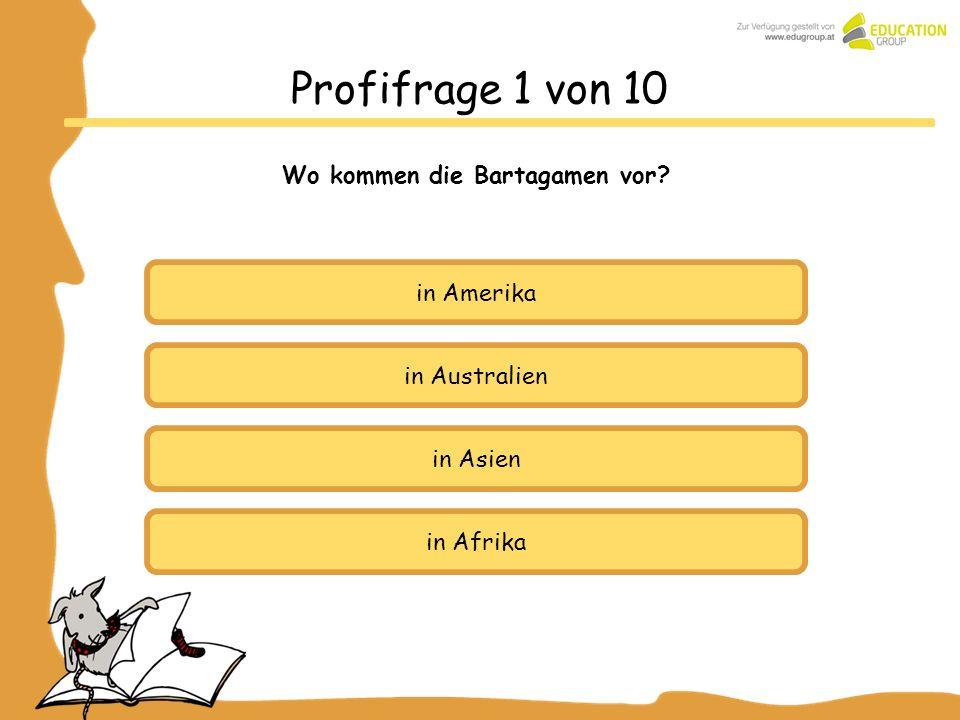 in Australien in Asien in Afrika Profifrage 1 von 10 Wo kommen die Bartagamen vor? in Amerika