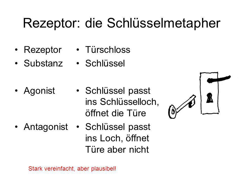 Rezeptor: die Schlüsselmetapher Rezeptor Substanz Agonist Antagonist Türschloss Schlüssel Schlüssel passt ins Schlüsselloch, öffnet die Türe Schlüssel