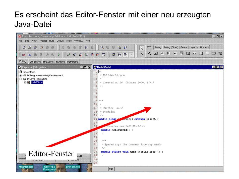 Editor-Fenster Es erscheint das Editor-Fenster mit einer neu erzeugten Java-Datei