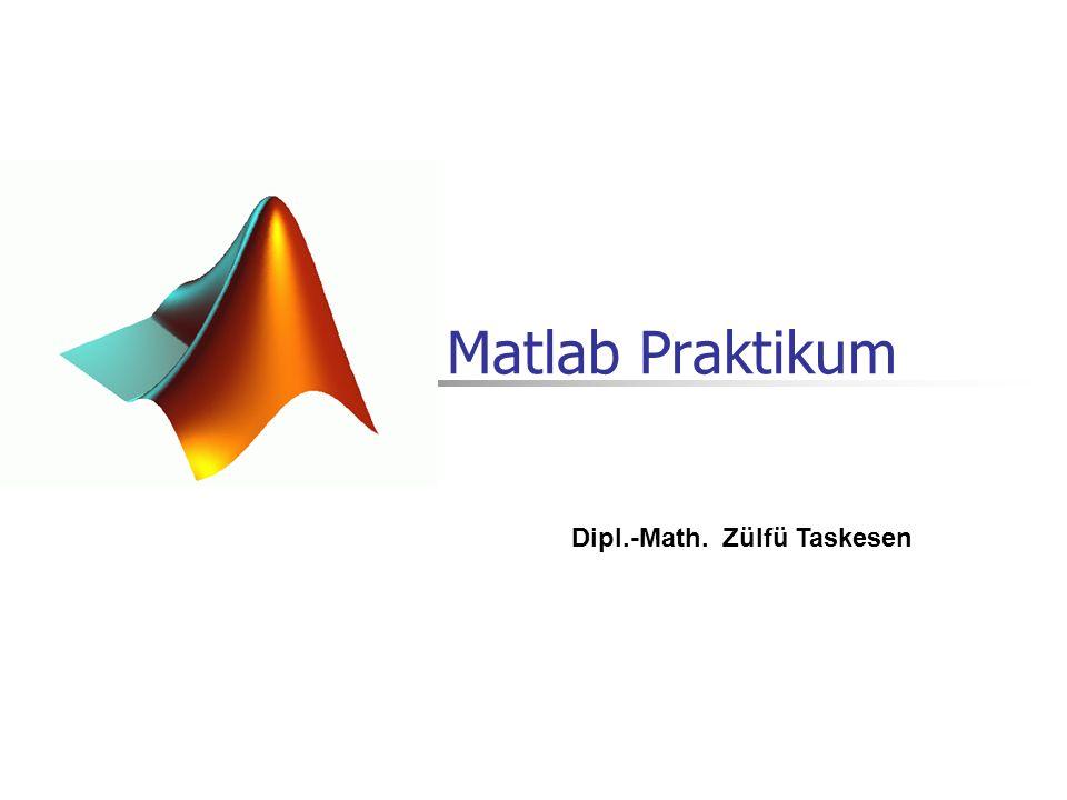 27.02.2014Dipl.-Math Zülfü Taskesen12 Komplexe Zahlen Komplexe und reellwertige Zahlen können in Matlab gleichzeitig ohne besondere Deklaration verwendet werden.