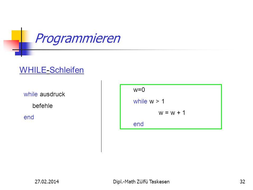 27.02.2014Dipl.-Math Zülfü Taskesen32 Programmieren while ausdruck befehle end WHILE-Schleifen w=0 while w > 1 w = w + 1 end