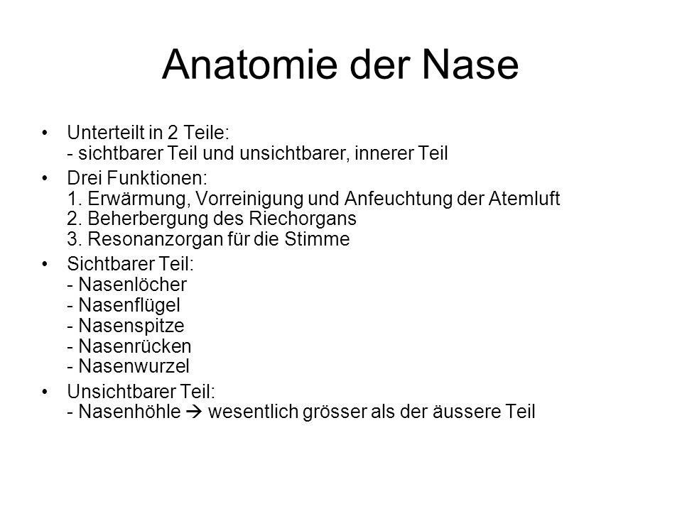 Anatomie der Nase Unterteilt in 2 Teile: - sichtbarer Teil und unsichtbarer, innerer Teil Drei Funktionen: 1. Erwärmung, Vorreinigung und Anfeuchtung