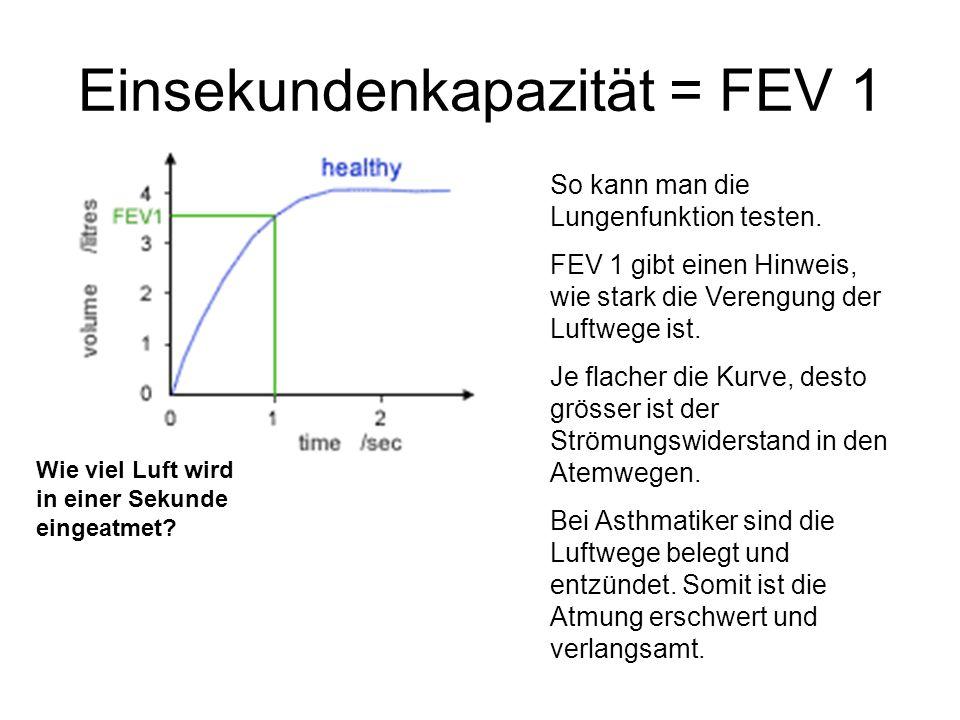 Einsekundenkapazität = FEV 1 So kann man die Lungenfunktion testen. FEV 1 gibt einen Hinweis, wie stark die Verengung der Luftwege ist. Je flacher die