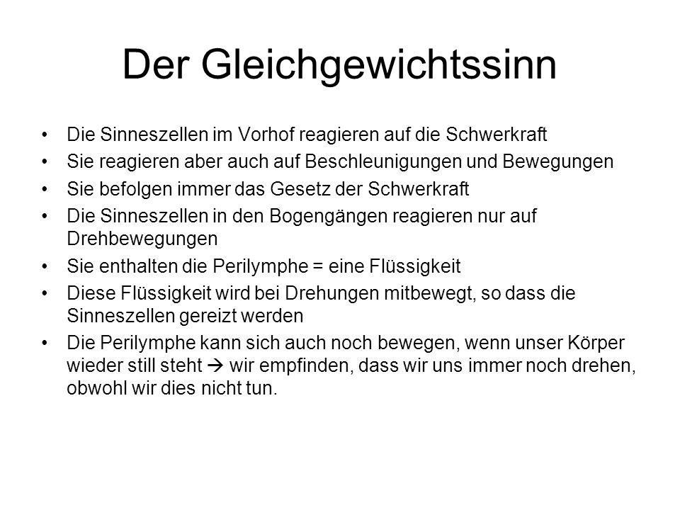Übersicht Das Ohr Aussenohr Ohrmuschel Gehörgang Mittelohr Hammer Amboss Steigbügel Ohrtrompete Innenohr Vorhof mit 3 Bogengängen Ohrschnecke Trommelfell = Grenze zw.