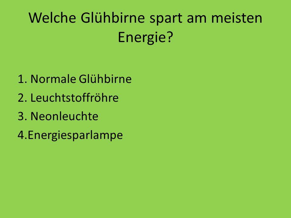 Welche Glühbirne spart am meisten Energie? 1. Normale Glühbirne 2. Leuchtstoffröhre 3. Neonleuchte 4.Energiesparlampe