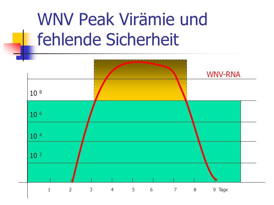WNV Peak Virämie und fehlende Sicherheit 1 2 3 4 5 6 7 8 9 Tage WNV-RNA 10 8 10 6 10 4 10 2