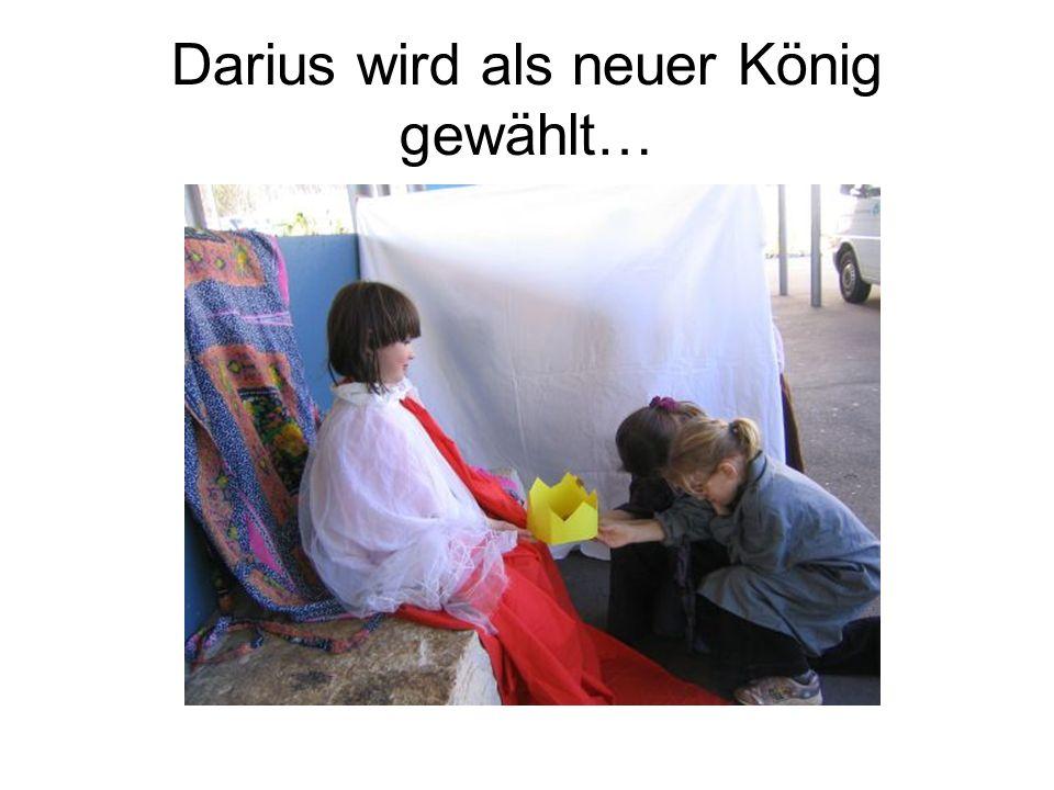 Darius wird als neuer König gewählt…