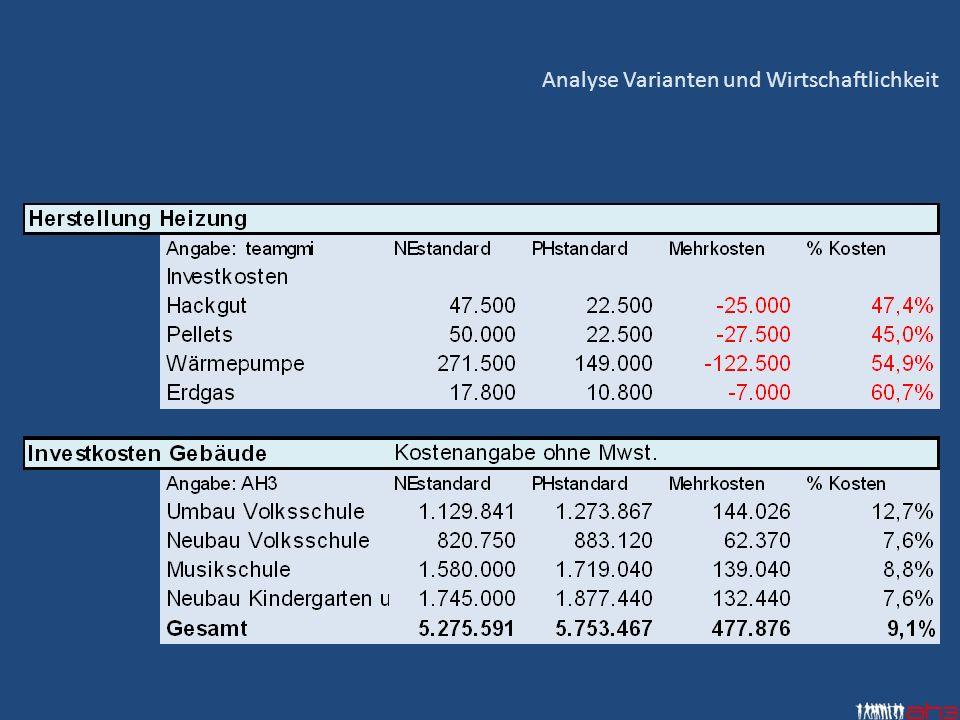 Analyse Varianten und Wirtschaftlichkeit