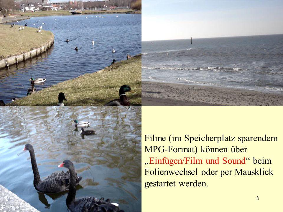 01.04.20048 Filme (im Speicherplatz sparendem MPG-Format) können überEinfügen/Film und Sound beim Folienwechsel oder per Mausklick gestartet werden.
