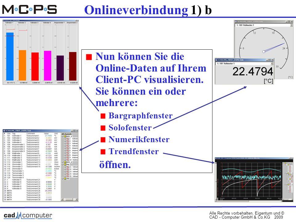 Alle Rechte vorbehalten, Eigentum und © CAD - Computer GmbH & Co.KG 2009 Onlineverbindung 1) b Nun können Sie die Online-Daten auf Ihrem Client-PC visualisieren.