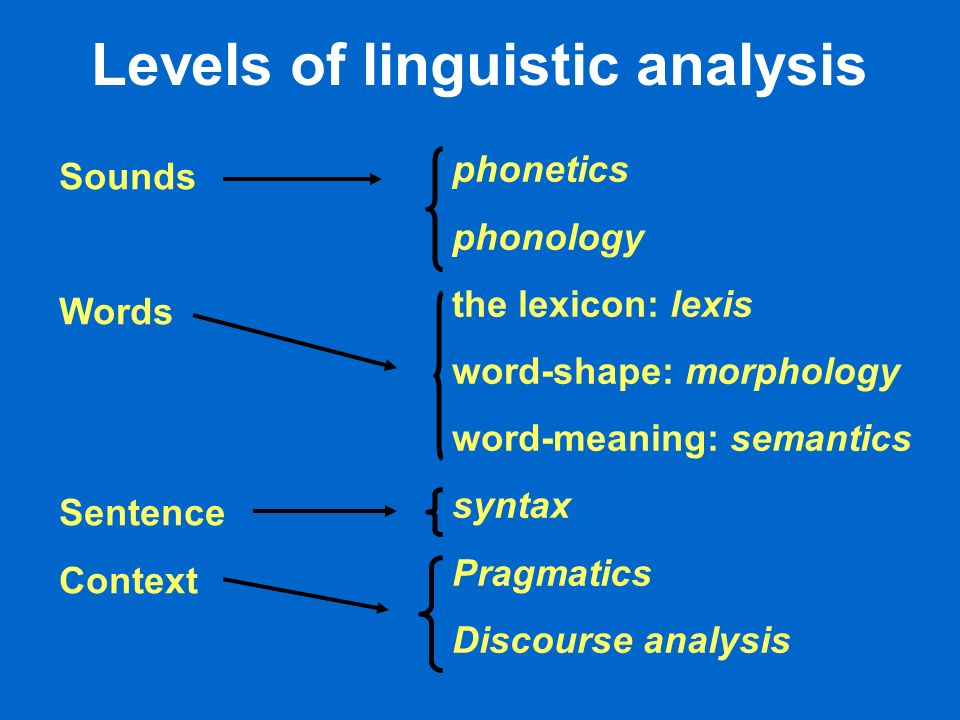 First … what we wont cover here … The middle and bottom of the pyramid semantics morphology syntax pragmatics discourse analysis Sounds Words Sentence Context
