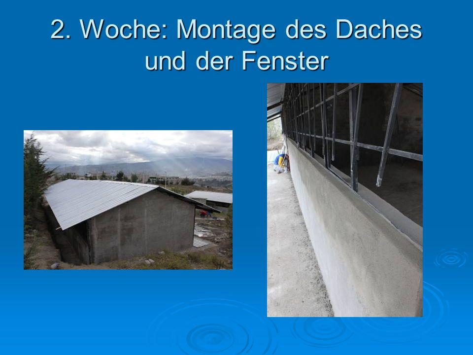 2. Woche: Montage des Daches und der Fenster
