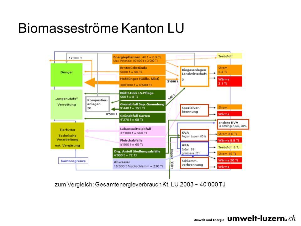 Biomasseströme Kanton LU zum Vergleich: Gesamtenergieverbrauch Kt. LU 2003 ~ 40'000 TJ