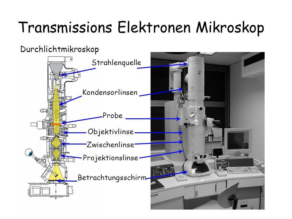 Transmissions Elektronen Mikroskop Durchlichtmikroskop Probe Objektivlinse Zwischenlinse Projektionslinse Betrachtungsschirm Strahlenquelle Kondensorl