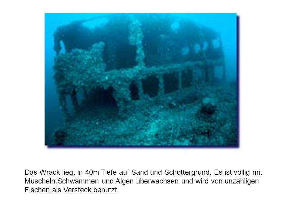 Das Wrack liegt in 40m Tiefe auf Sand und Schottergrund.