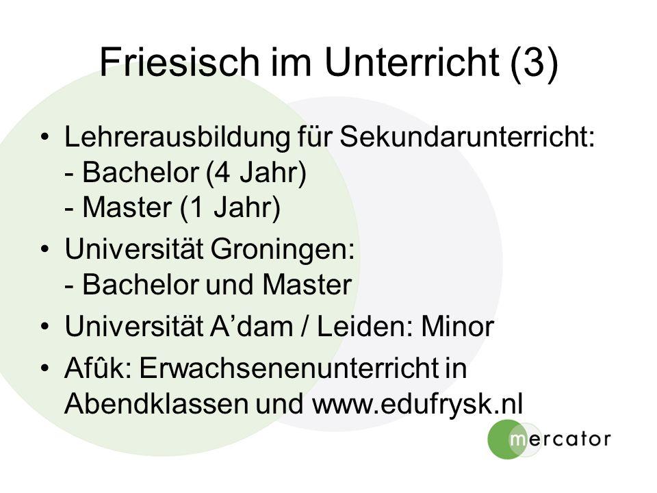 Friesisch im Unterricht (3) Lehrerausbildung für Sekundarunterricht: - Bachelor (4 Jahr) - Master (1 Jahr) Universität Groningen: - Bachelor und Maste