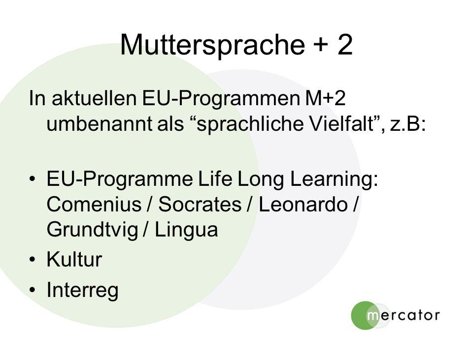 Muttersprache + 2 In aktuellen EU-Programmen M+2 umbenannt als sprachliche Vielfalt, z.B: EU-Programme Life Long Learning: Comenius / Socrates / Leonardo / Grundtvig / Lingua Kultur Interreg