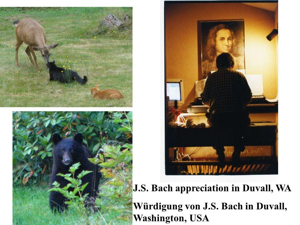 What about culture / music / Bachs music.Was ist nun mit Kultur / Musik / der Musik von Bach.
