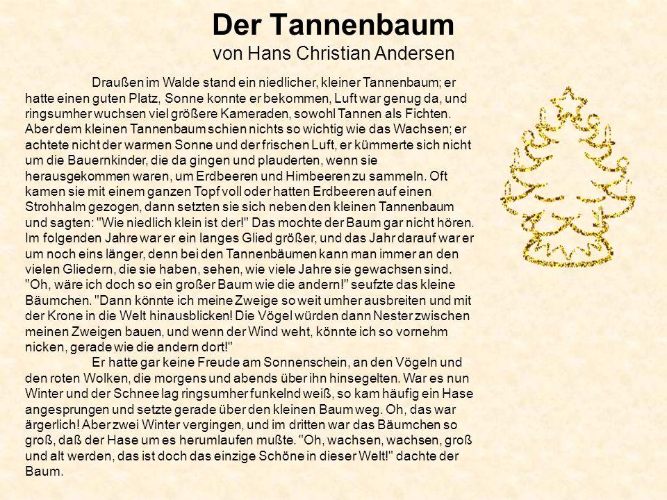 Der Tannenbaum von Hans Christian Andersen Draußen im Walde stand ein niedlicher, kleiner Tannenbaum; er hatte einen guten Platz, Sonne konnte er bekommen, Luft war genug da, und ringsumher wuchsen viel größere Kameraden, sowohl Tannen als Fichten.