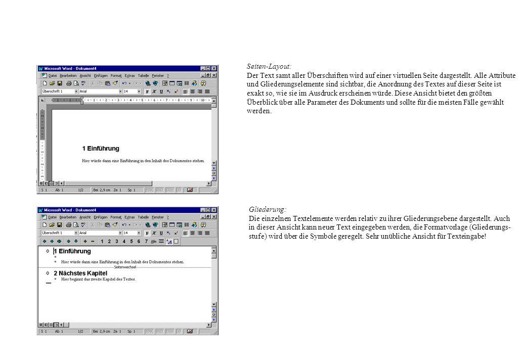 Seiten-Layout: Der Text samt aller Überschriften wird auf einer virtuellen Seite dargestellt. Alle Attribute und Gliederungselemente sind sichtbar, di