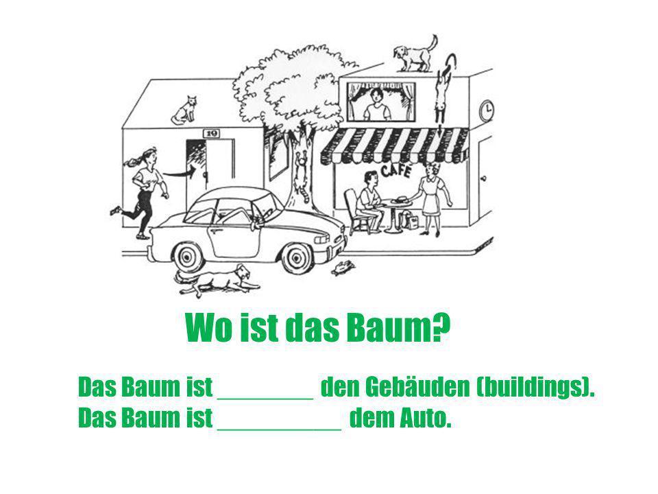 Wo ist das Baum? Das Baum ist _______ den Gebäuden (buildings). Das Baum ist _________ dem Auto.