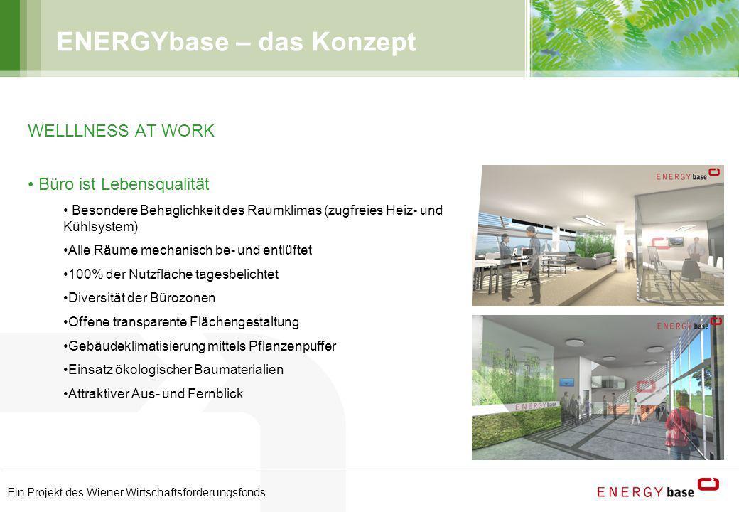 Ein Projekt des Wiener Wirtschaftsförderungsfonds ENERGYbase – das Konzept WELLLNESS AT WORK Büro ist Lebensqualität Besondere Behaglichkeit des Raumk