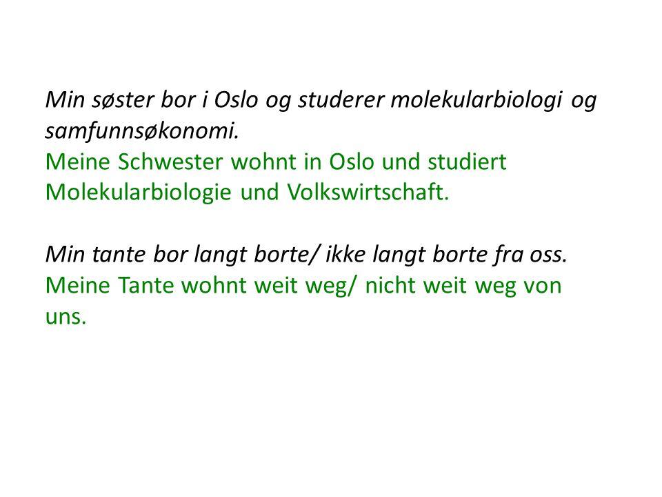 Min søster bor i Oslo og studerer molekularbiologi og samfunnsøkonomi. Meine Schwester wohnt in Oslo und studiert Molekularbiologie und Volkswirtschaf