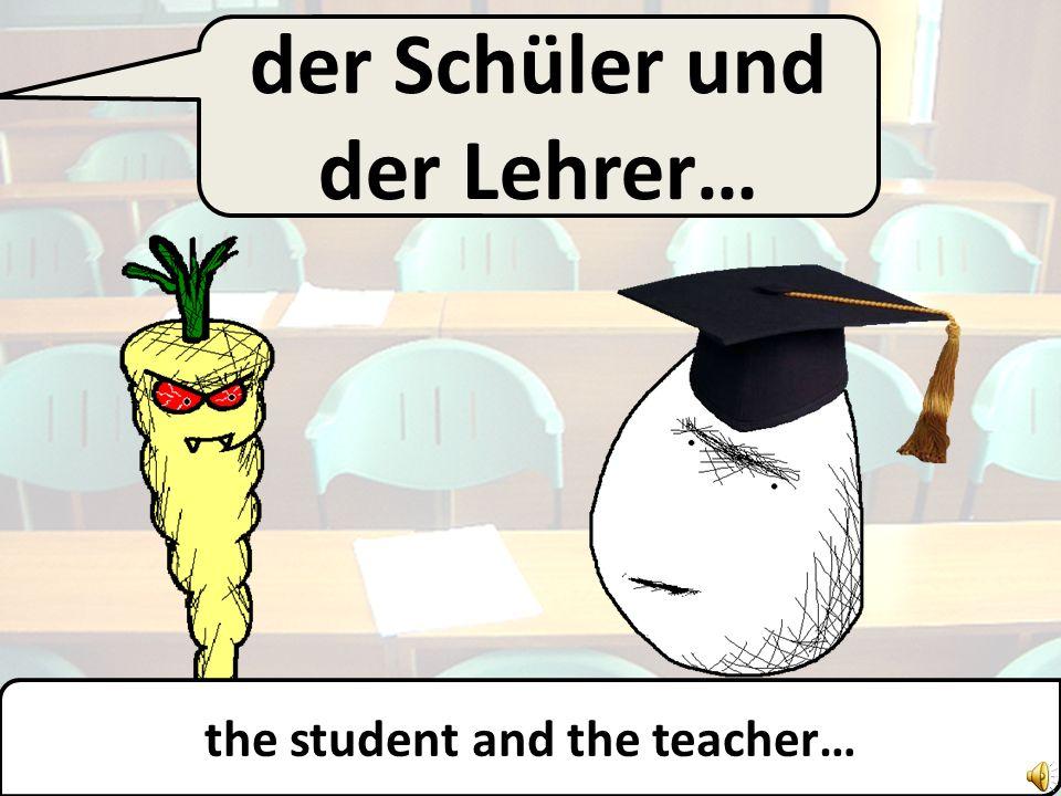 der Schüler… the student…