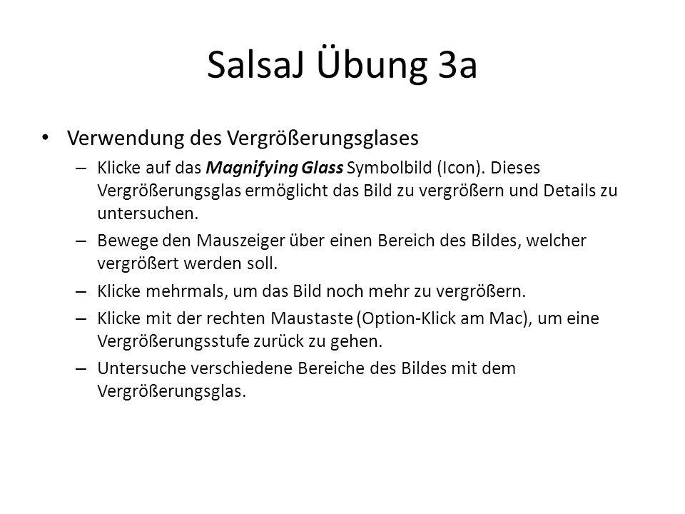 SalsaJ Übung 3a Verwendung des Vergrößerungsglases – Klicke auf das Magnifying Glass Symbolbild (Icon).