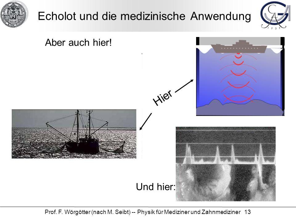 Prof. F. Wörgötter (nach M. Seibt) -- Physik für Mediziner und Zahnmediziner 13 Echolot und die medizinische Anwendung Hier Aber auch hier! Und hier: