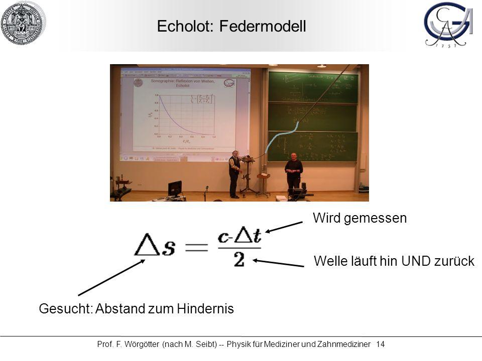 Prof. F. Wörgötter (nach M. Seibt) -- Physik für Mediziner und Zahnmediziner 14 Echolot: Federmodell Welle läuft hin UND zurück Wird gemessen Gesucht: