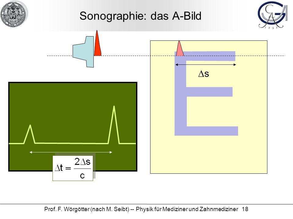 Prof. F. Wörgötter (nach M. Seibt) -- Physik für Mediziner und Zahnmediziner 18 Sonographie: das A-Bild s