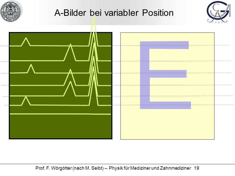 Prof. F. Wörgötter (nach M. Seibt) -- Physik für Mediziner und Zahnmediziner 19 A-Bilder bei variabler Position