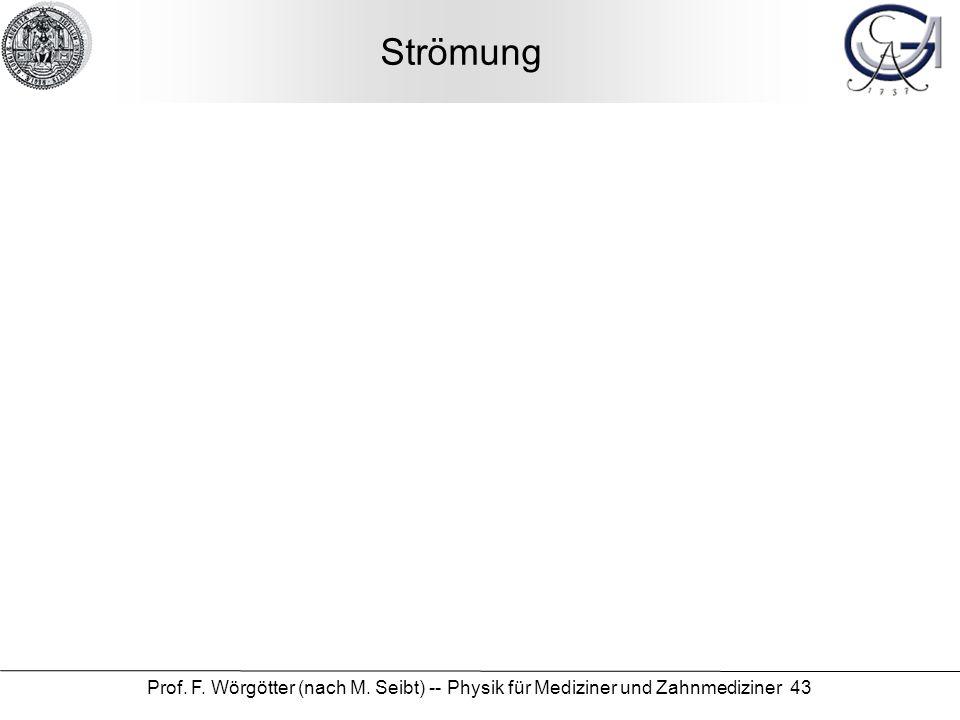 Prof. F. Wörgötter (nach M. Seibt) -- Physik für Mediziner und Zahnmediziner 43 Strömung