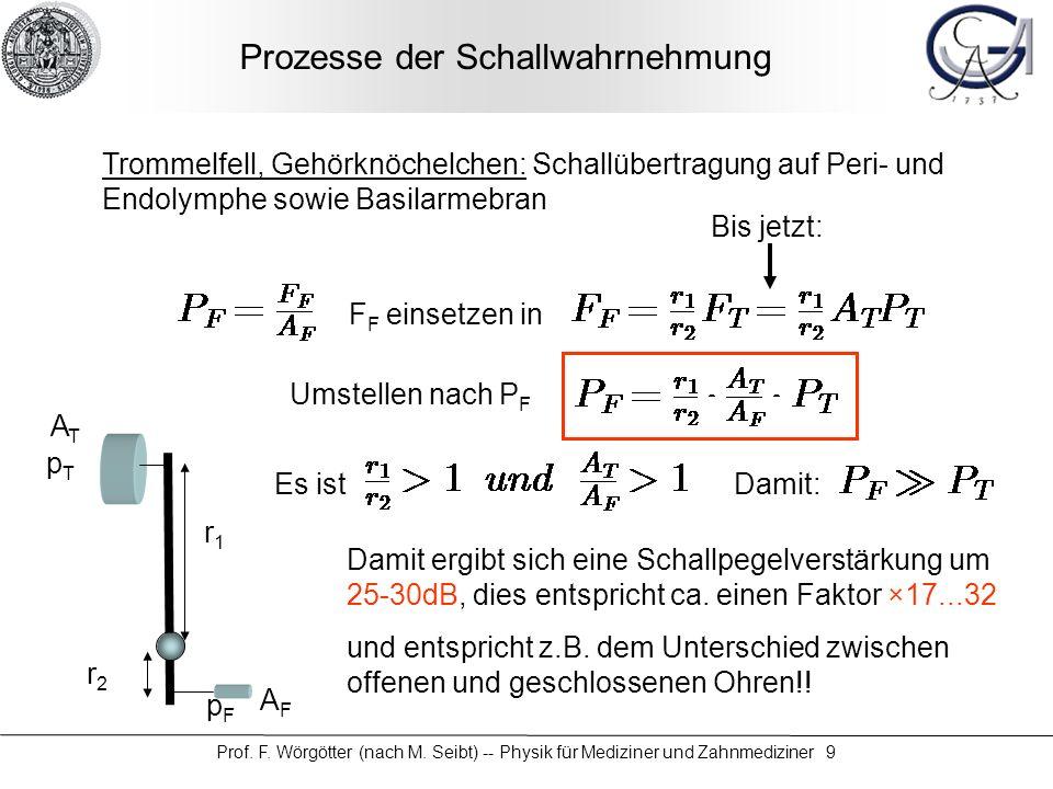 Prof. F. Wörgötter (nach M. Seibt) -- Physik für Mediziner und Zahnmediziner 9 Prozesse der Schallwahrnehmung Trommelfell, Gehörknöchelchen: Schallübe
