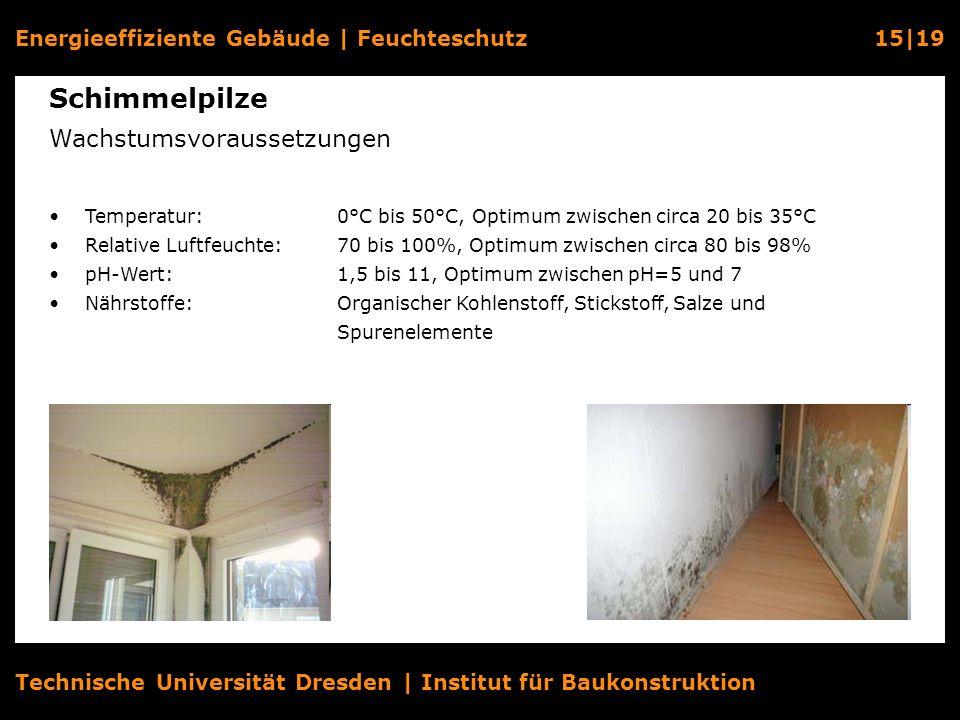 Energieeffiziente Gebäude   Feuchteschutz15 19 Technische Universität Dresden   Institut für Baukonstruktion Schimmelpilze Wachstumsvoraussetzungen Te