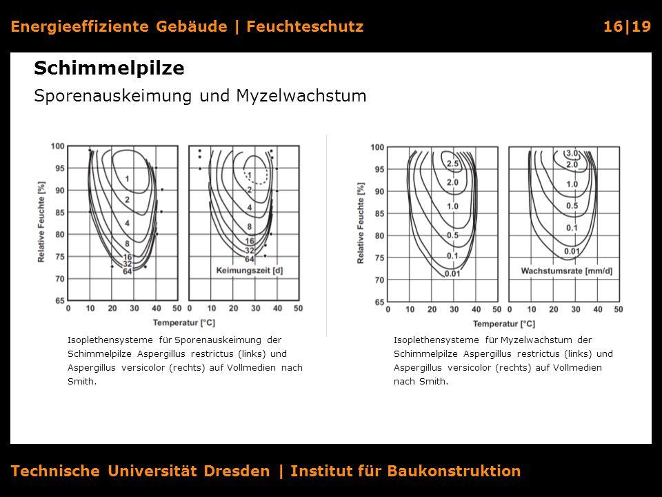 Energieeffiziente Gebäude   Feuchteschutz16 19 Technische Universität Dresden   Institut für Baukonstruktion Schimmelpilze Sporenauskeimung und Myzelw