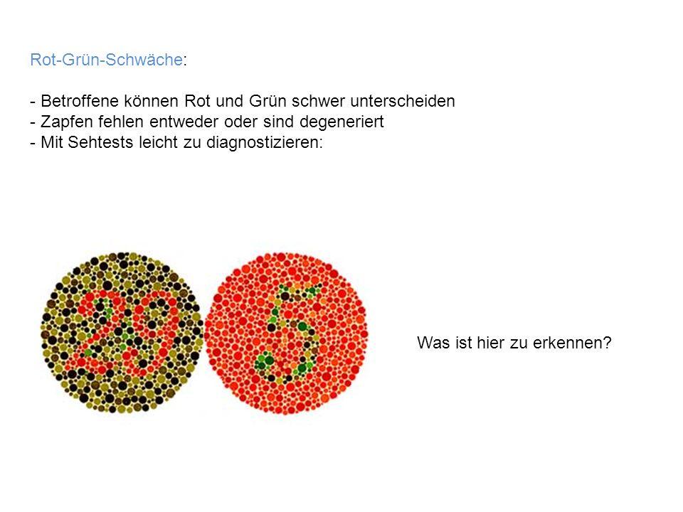 Rot-Grün-Schwäche: - Betroffene können Rot und Grün schwer unterscheiden - Zapfen fehlen entweder oder sind degeneriert - Mit Sehtests leicht zu diagn