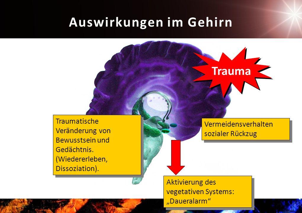 Trauma Aktivierung des vegetativen Systems: Daueralarm Vermeidensverhalten sozialer Rückzug Traumatische Veränderung von Bewusstsein und Gedächtnis.